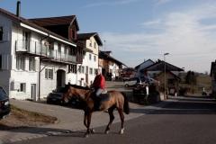sulzbach006