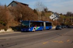 sulzbach013