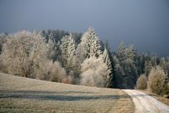 sulzbach016