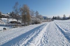 sulzbach021